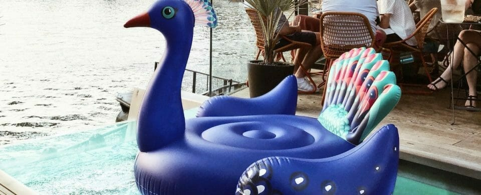 The Newest Shift in the Pool Inflatable Trend